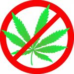 Сообщи, где растет наркотик!
